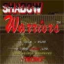 JAMMA - Shadow Warriors